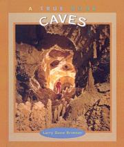 Cover of: Caves by Larry Brimner