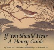 Cover of: If You Should Hear a Honey Guide by April Pulley Sayre