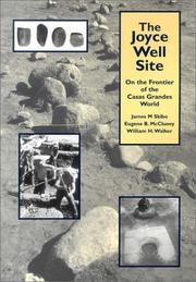 Cover of: The Joyce Well Site by James M. Skibo