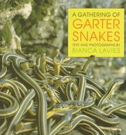 Cover of: A gathering of garter snakes by Bianca Lavies