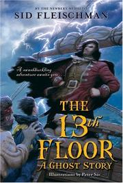 Cover of: The 13th floor by Sid Fleischman