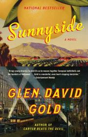 Cover of: Sunnyside (Vintage) by Glen David Gold