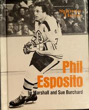 Cover of: Sports hero by Marshall Burchard