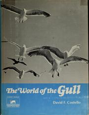 Cover of: The world of the gull by David Francis Costello