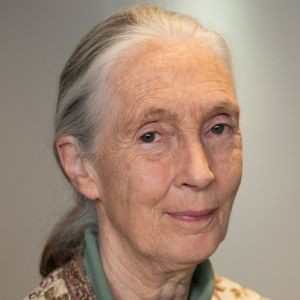 Photo of Jane Goodall