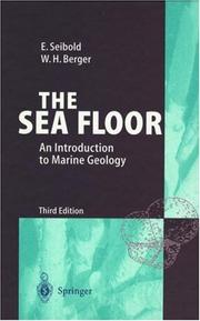 The Sea Floor by Eugen Seibold, Wolfgang H. Berger