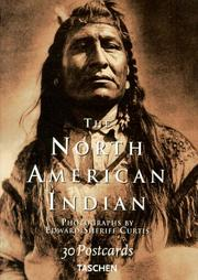 Cover of: North American Indians (Big)