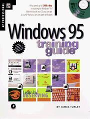 Cover of: Wind ows 95 training guide