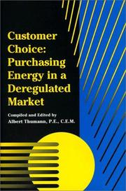 Cover of: Customer Choice: Purchasing Energy In A Deregulated Market