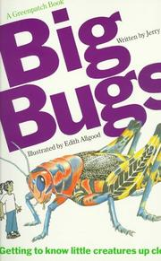 Cover of: Big bugs by Jerry Booth