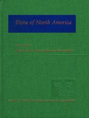 Cover of: Flora of North America: North of Mexico Volume 3: Magnoliophyta: Magnoliidae and Hamamelidae (Flora of North America: North of Mexico) | Flora of North America Editorial Committee