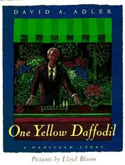 One yellow daffodil