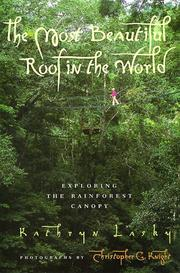 Cover of: The most beautiful roof in the world | Kathryn Lasky