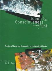 Cover of: Identity, consciousness and the past |