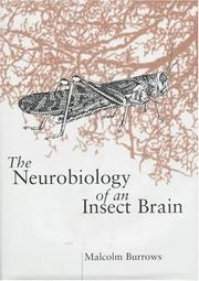 Cover of: The neurobiology of an insect brain