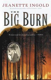Cover of: Big Burn | Jeanette Ingold