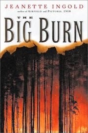 Cover of: The Big Burn