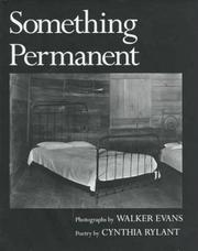 Cover of: Something permanent