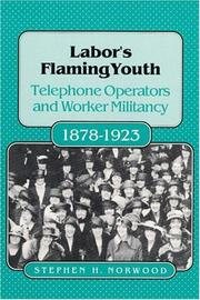LABORS FLAMING YOUTH by Stephen H. Norwood