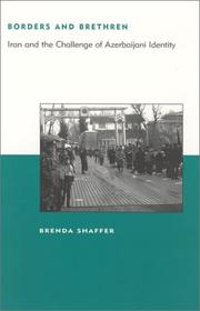 Cover of: Borders and Brethren | Brenda Shaffer