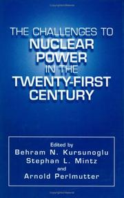 Cover of: The Challenges to Nuclear Power in the Twenty-First Century |