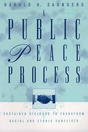 Cover of: A Public Peace Process