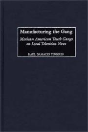 Cover of: Manufacturing the gang | RauМЃl Damacio Tovares