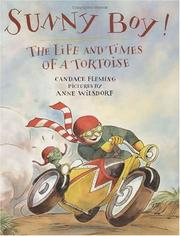 Cover of: Sunny Boy!: the life and times of a tortoise