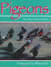 Cover of: Pigeons | Dorothy Hinshaw Patent