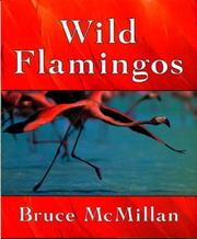 Cover of: Wild flamingos | Bruce McMillan