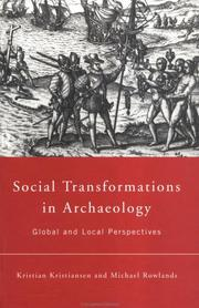 Cover of: Social transformations in archaeology