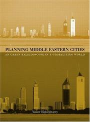 Cover of: Planning Middle Eastern Cities