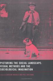 Cover of: Picturing the social landscape: visual methods in the sociological imagination