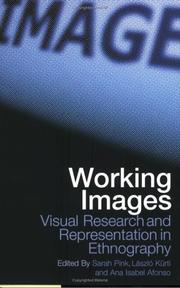 Cover of: WORKING IMAGES: VISUAL RESEARCH AND REPRESENTATION IN ETHNOGRAPHY; ED. BY SARAH PINK