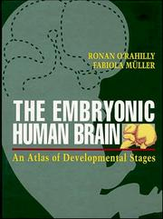 Cover of: The embryonic human brain