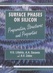 Cover of: Surface phases on silicon | V. G. Lifshits