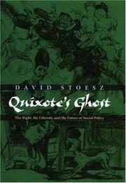 Cover of: Quixote's Ghost