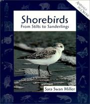 Cover of: Shorebirds: From Stilts to Sanderlings (Animals in Order)