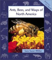 Cover of: Ants, Bees, and Wasps of North America (Animals in Order)
