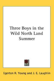 Cover of: Three Boys in the Wild North Land Summer | Egerton R. Young