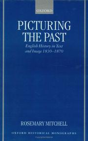Cover of: Picturing the past