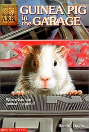 Cover of: Guinea Pig in the Garage (Animal Ark Series #19) |