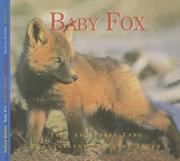 Cover of: Baby Fox (Nature Babies) | Aubrey Lang