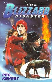 Cover of: The blizzard disaster