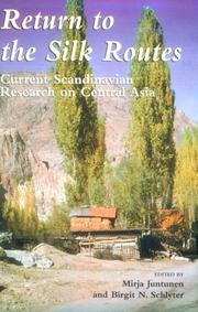 Cover of: Return to the silk routes |