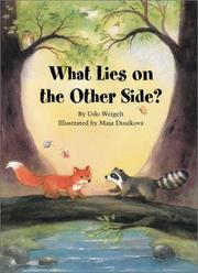 Cover of: What lies on the other side?