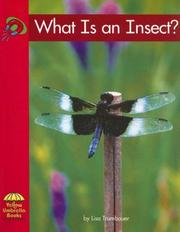 Cover of: What Is an Insect? (Yellow Umbrella Science) | Lisa Trumbauer