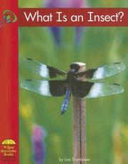 Cover of: What is an insect