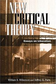 Cover of: New Critical Theory Essays On Liberation