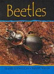 Cover of: Beetles (Minibeasts)